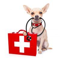 Medicare Enrollment: Avoid the Pitfalls, Take the Opportunities