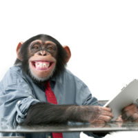 Monkeys Throwing Darts (and Why the Monkeys Have Been Losing Lately)